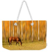 Mystic Autumn Grazing Horse Weekender Tote Bag