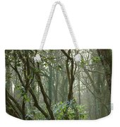 Mythical Place Weekender Tote Bag