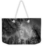 Naked Branches Weekender Tote Bag
