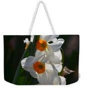 Narcissus Evening Glow Weekender Tote Bag