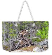 Natural Sculpture Weekender Tote Bag