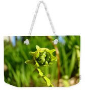 Nature Green Fern Frond Unfolding Art Prints Ferns Weekender Tote Bag