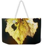 Nature Recycles Weekender Tote Bag