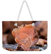 Nature's Abstract 4 Weekender Tote Bag
