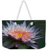 Nature's Baroque Weekender Tote Bag