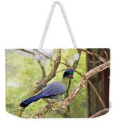 Natures Beauty Weekender Tote Bag by Aimee L Maher Photography and Art Visit ALMGallerydotcom