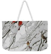 Nature's Christmas Ornaments Weekender Tote Bag