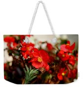 Nature's Fire Weekender Tote Bag
