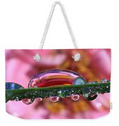 Nature's Ornaments Weekender Tote Bag