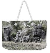 Nature's Statues  Weekender Tote Bag