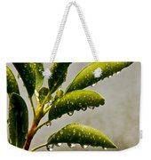 Natures Teardrops Weekender Tote Bag