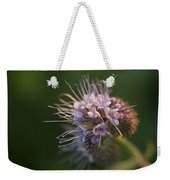 Natures Treasures Weekender Tote Bag
