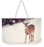 Natures Winter Visit Weekender Tote Bag