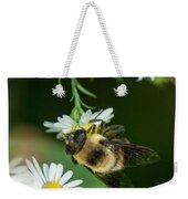 Nectar Collecting Drone Fly  Weekender Tote Bag