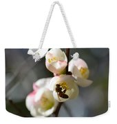 Nectar Hunting In Spring 2013 Weekender Tote Bag