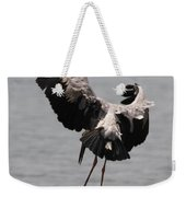 Need Some Space To Land Weekender Tote Bag