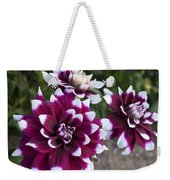 Neighbors Garden Treasures Weekender Tote Bag