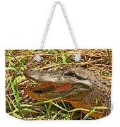 Nesting Alligator Weekender Tote Bag