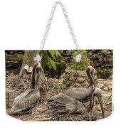 Nesting Brown Pelicans Weekender Tote Bag