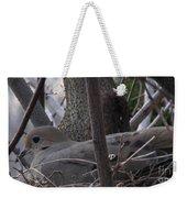 Nesting Morning Dove Weekender Tote Bag