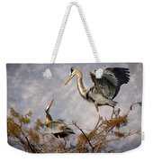 Nesting Time Weekender Tote Bag by Debra and Dave Vanderlaan