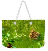 New Baby Ducklings Weekender Tote Bag