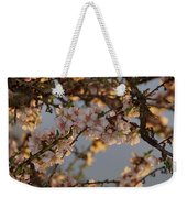 New Blossoms - Old Almond Tree Weekender Tote Bag
