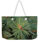 New Blue Spruce Buds Weekender Tote Bag