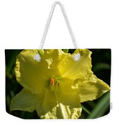 New Born - Lily Weekender Tote Bag