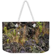 New Growth In A Desolate Area Weekender Tote Bag