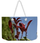 New Growth  Weekender Tote Bag