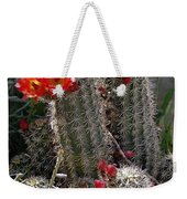 New Mexico Cactus Weekender Tote Bag