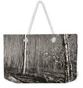 New Mexico Series - Bare Autumn Bw Weekender Tote Bag