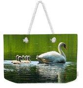 New Mute Swan Family In May Weekender Tote Bag