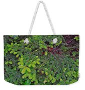New Needles At Lobster Cove In Rocky Harbour-nl Weekender Tote Bag