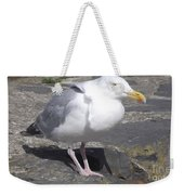 New Quay Gull 1 Weekender Tote Bag