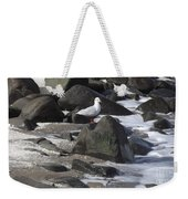 New Quay Gull 3 Weekender Tote Bag