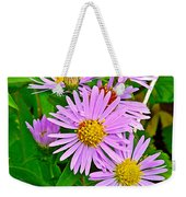 New York Asters In Flower's Cove-newfoundland Weekender Tote Bag