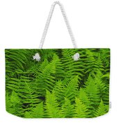 New York Ferns Weekender Tote Bag