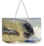 Newborn Gray Seal Pup Halichoerus Weekender Tote Bag