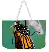 Newly-emerged Monarch Butterfly Weekender Tote Bag