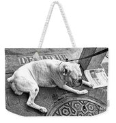 Newsworthy Dog In French Quarter Black And White Weekender Tote Bag