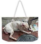 Newsworthy Dog In French Quarter Weekender Tote Bag