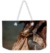 Night Heron And Crawdaddy Weekender Tote Bag