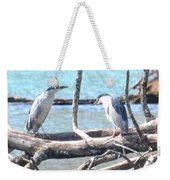 Night Herons Weekender Tote Bag