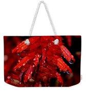 Night Of Glistening Red Salvia Weekender Tote Bag