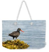 No Bird Is An Island Weekender Tote Bag