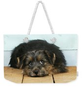 Norfolk Terrier Puppy Weekender Tote Bag
