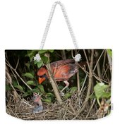 Northern Cardinal At Nest Weekender Tote Bag