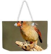 Northern Cardinal Cardinalis Cardinalis Weekender Tote Bag